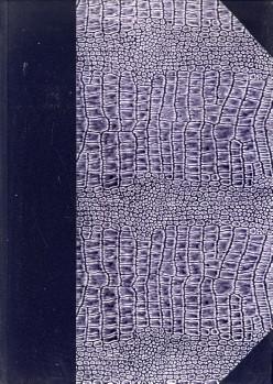 - Bulletin van de Kon. Ned. Oudheidkundige Bond. Excursienummer. 1. Het Kasteel Hernen; 2. De St. Stevenskerk te Nijmegen; 3. Batenburg; 4. Korte notitie over Grave;5. Het Museum Kam en het Valkhof; 6. het Oude Raadhuis te Nijmegen