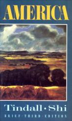 Afbeelding van tweedehands boek: TINDALL, GEORGE BROWN; SHI, DAVID E-America. A narrative history. Brief third edition